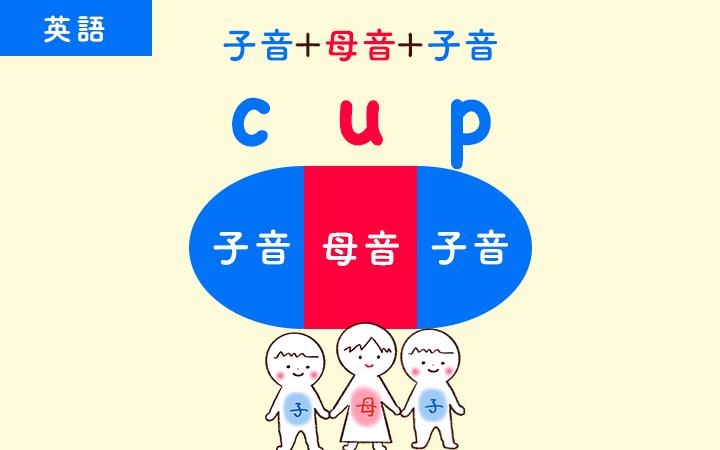 cupは1音節
